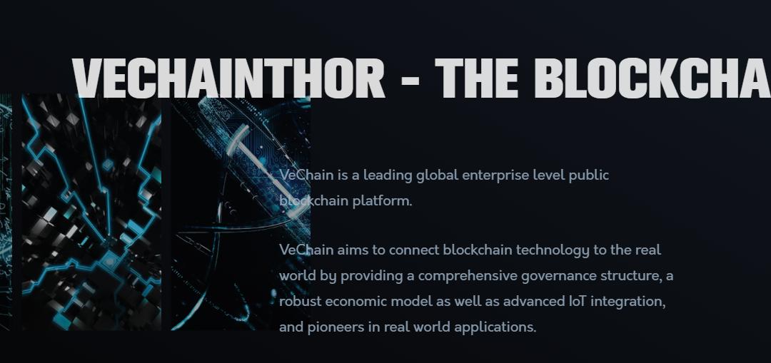 VeChain Thor (VET): revue approfondie des pièces